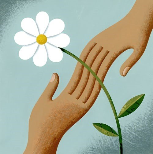 Hands touching in front of a Flower