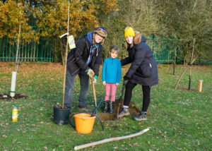 Stanlake Meadow tree planting